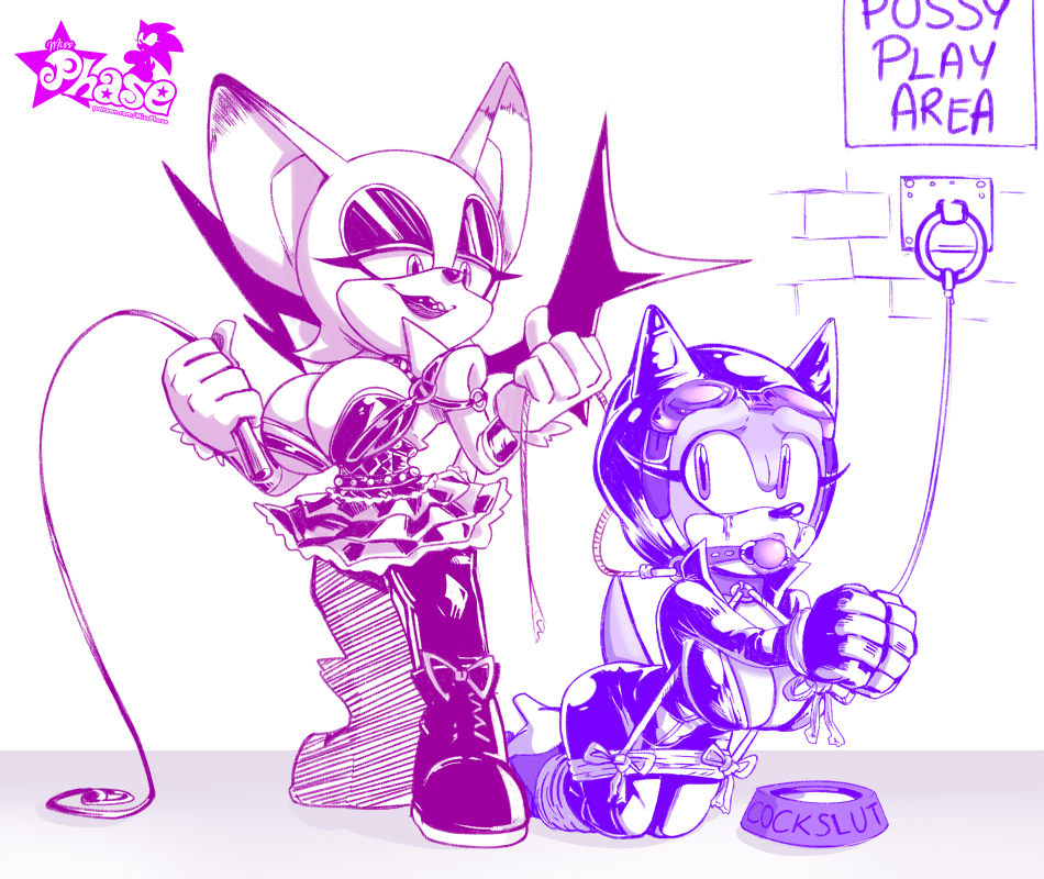rouge and x sonic amy Male info chan x reader