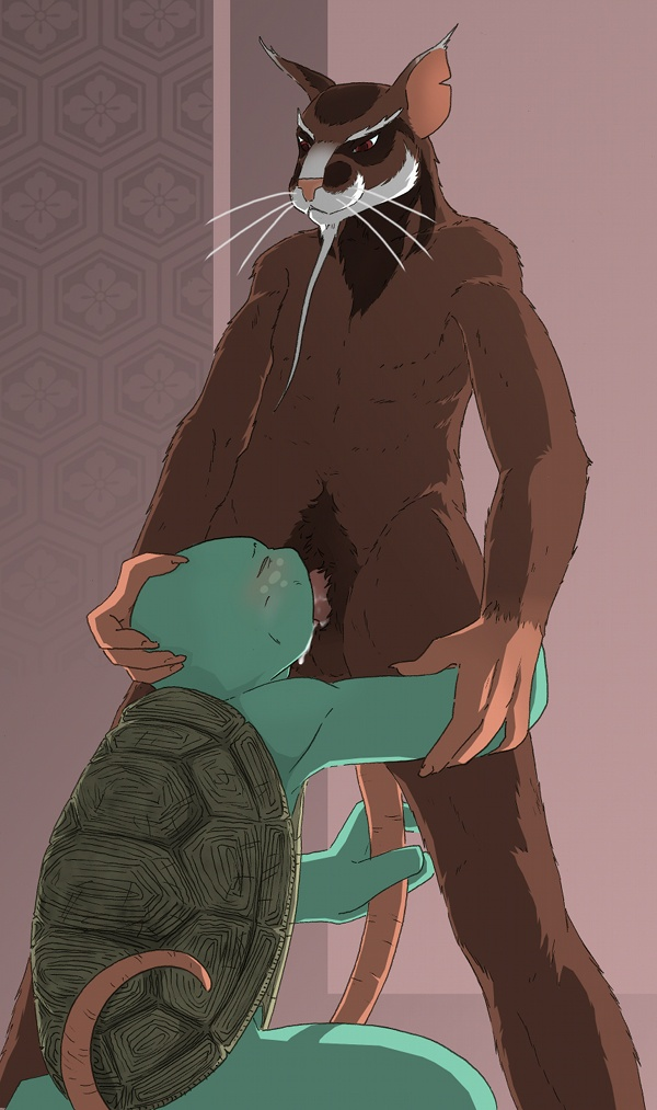 mutant turtles ninja teenage xxx Digimon cyber sleuth female protagonist